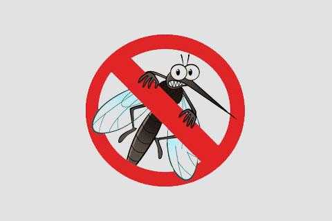 Xô, Mosquito!